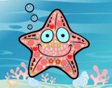 Estrella marina