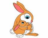 Madre conejo