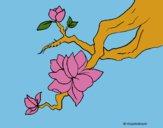 Dibujo Flor de almendro pintado por LunaLunita