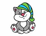 Gato con gorro