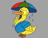 Dibujo Pato bajo la lluvia pintado por sufrit