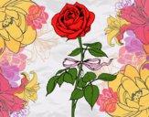 Dibujo Una rosa pintado por anahi22005