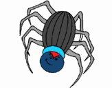 Araña 2
