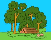 Dibujo Bosque 2 pintado por LunaLunita