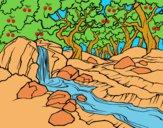 Dibujo Paisaje de bosque con un río pintado por LunaLunita