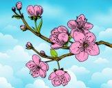 Dibujo Rama de cerezo pintado por THEKARO