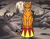 Dibujo Tigre de circo pintado por PERRY123