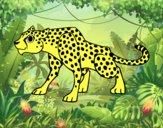 Un leopardo