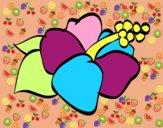 Flor de lagunaria