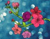Dibujo Rama de cerezo pintado por candelastc