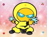 Niño ninja