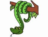 Serpiente colgada de un árbol