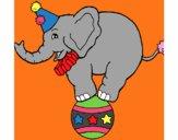 Elefante encima de una pelota