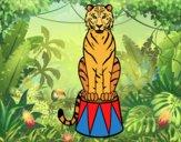 Dibujo Tigre de circo pintado por gloria_pri