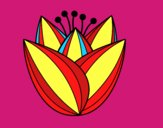 Flor de tulipán