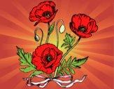 Dibujo Unas amapolas pintado por Pillina