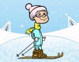 Esquiador profesional