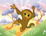 Mono capuchino bebé