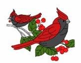 Dibujo Pájaros pintado por Peach-Pie