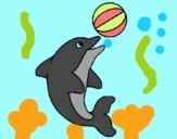 Delfín jugando con una pelota