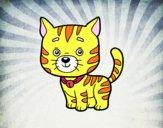 Un gato doméstico