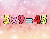 5 x 9