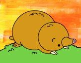 Dibujo Topo tumbado pintado por meibol