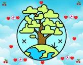 Circulo árbol
