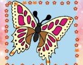 Mariposa 2a