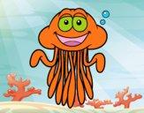 Medusa pelagia