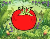 Tomate ecológico