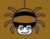 Araña a rayas