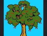 Árbol 1