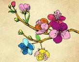Dibujo Rama de cerezo pintado por fakita