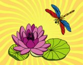 Dibujo Flor de loto pintado por olgablanco