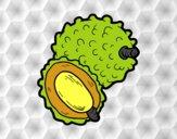 Fruta exótica lichi