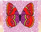 Mariposa 1a