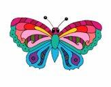 Mariposa 3a