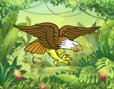 Dibujo Tatuaje de águila pintado por matimanent