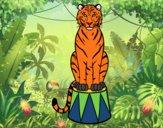 Dibujo Tigre de circo pintado por carlitoslo