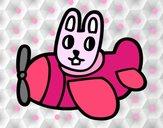 Conejo en avión
