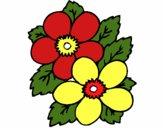 Flores 1