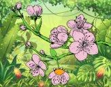 Dibujo Rama de cerezo pintado por ariana-cam