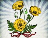 Dibujo Unas amapolas pintado por Evelyn16