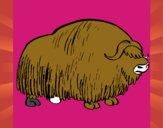 Bisonte 1