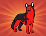 Dibujo Perro lobo pintado por samuel123