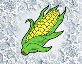Una mazorca de maíz