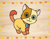 Dibujo Gato doméstico pintado por Catiest