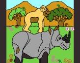 Rinoceronte y mono