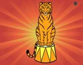 Dibujo Tigre de circo pintado por santy15